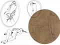Portfolio - sketches
